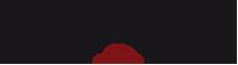 transhelvetica_logo